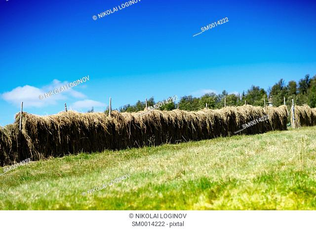 Diagonal haystacks landscape background hd