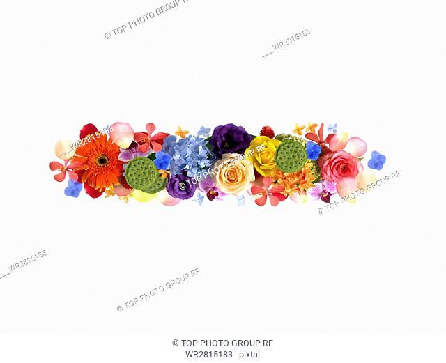 Sign of Flower