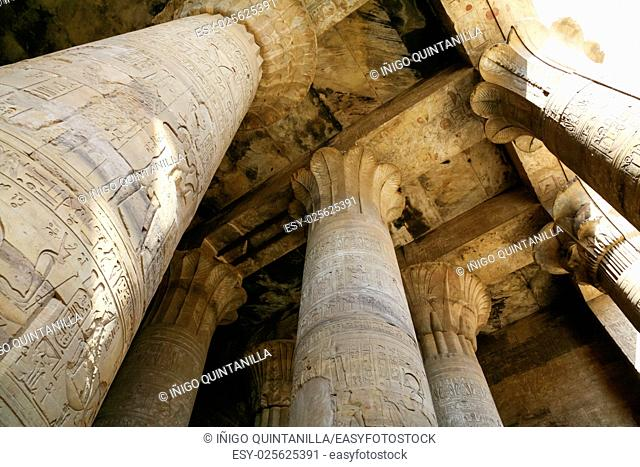 big stone columns in Egyptian Edfu Temple of falcon god Horus, with carving figures and hieroglyphs, in Egypt, Africa