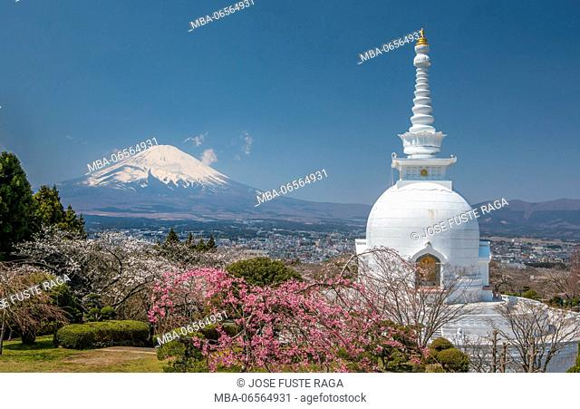 Japan, Gotemba City, Budist Temple and Mount Fuji, Chery Blossoms