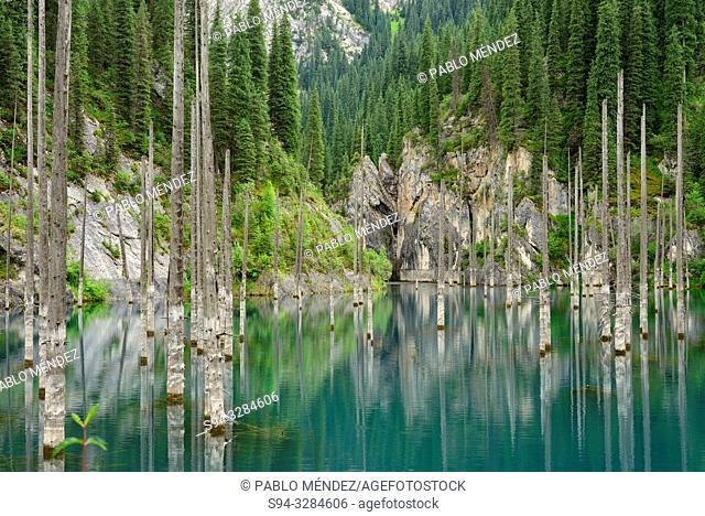 Kaindy lake, Kungey Alatau, Kazakhstan