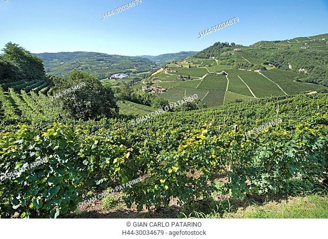 Italy, panorama of vineyards of Piedmont Langhe-Roero and Monferrato on the World Heritage List UNESCO Italy, Piedmont, Vineyards