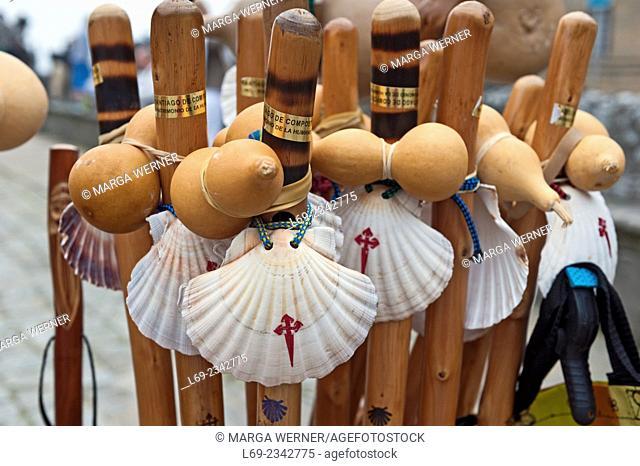 Walking sticks with scallop shell, Santiago de Compostela, A Coruna, Galicia, Spain, Europe