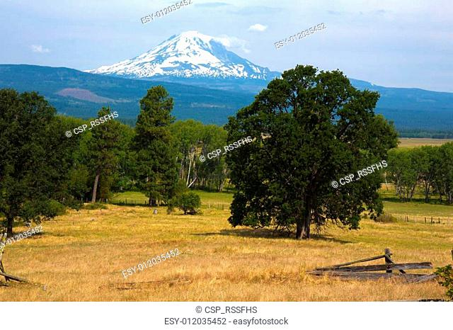 Mount hood from Trout Lake