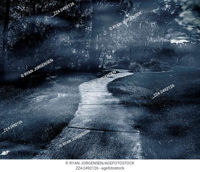 Dark night time landscape scene of a winding forest path navigating a trail of blue mist and twilight fog. Destination unknown