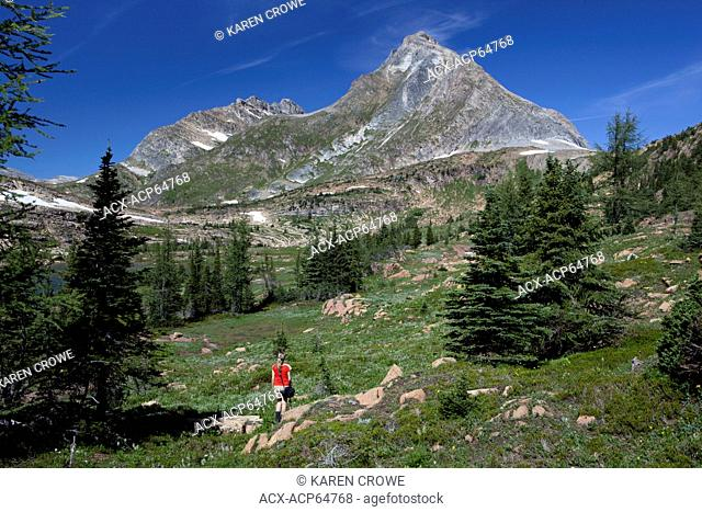 Hiker heading towards Frugal Peak, Height of the Rockies Provincial Park, British Columbia, Canada