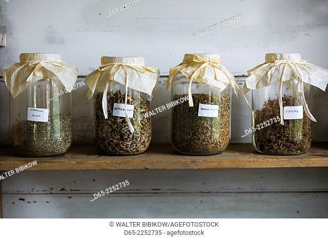USA, New Hampshire, Canterbury, Canterbury Shaker Village, former Shaker religious community, herbs