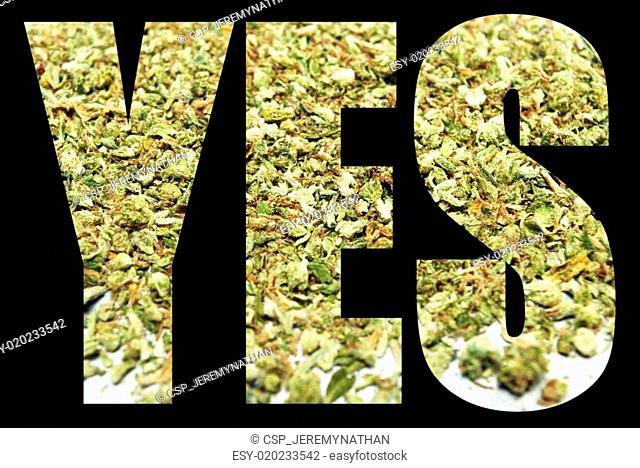 Marijuana, Yes