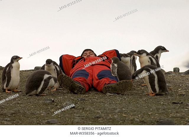 Antarctica, South Shetlands Islands, Aitcho Island, Tourist at Gentoo Penguin colony. MR