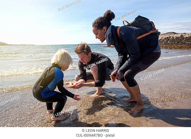 Family finding animal on beach, Loch Eishort, Isle of Skye, Hebrides, Scotland