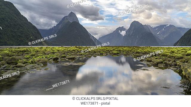 Reflection of Milford Sound with low tide. Fiordland NP, Southland district, Southland region, South Island, New Zealand
