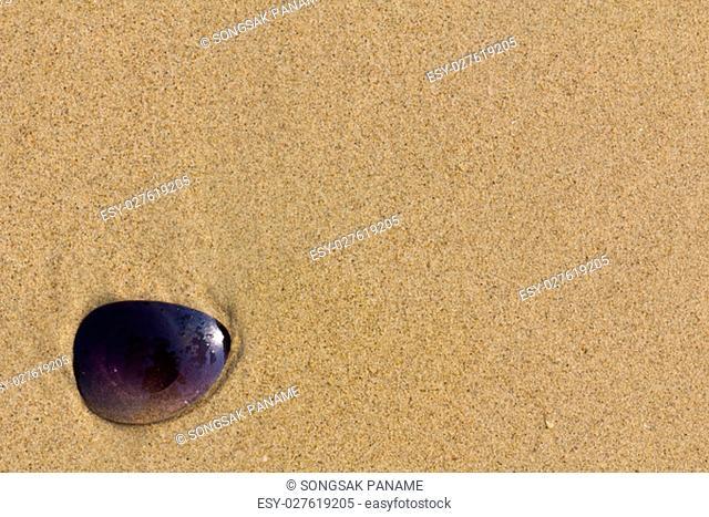 Sunglass items on beach a sunny pile of sand