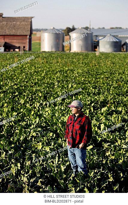 Hispanic farmer standing in crop field