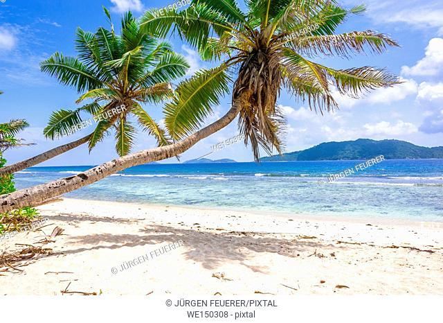 Beach of the Seychelles, Island La Digue, Beach Anse Fourmis