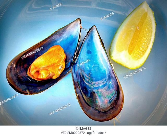 Steamed mussel, Lorbé, A Coruña, Spain