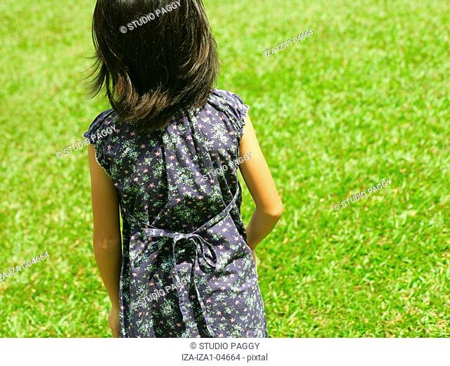 Rear view of a girl standing on the lawn