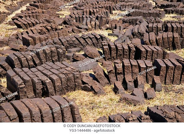 Rows of peat cuttings drying in the sun, Scotland  Peat is a traditional fuel reasource in the Scottish highlands