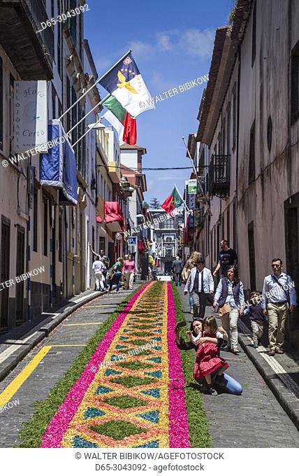 Portugal, Azores, Sao Miguel Island, Ponta Delgada, Festa Santo Christo dos Milagres festival, street designs for the holy procession made with templates and...