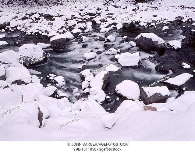 Snow covers rocks along Icicle Creek, Wenatchee National Forest, Washington, USA