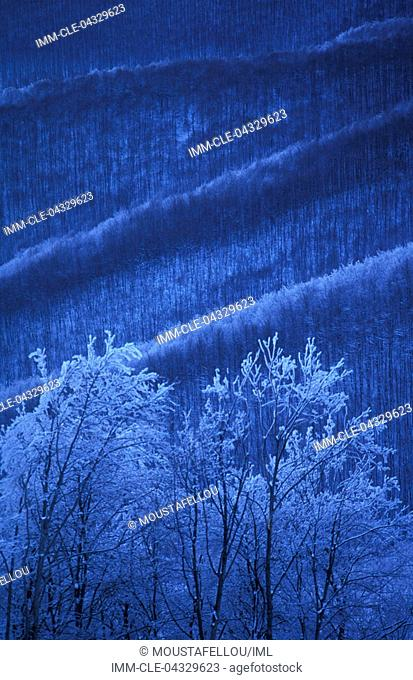 Vigla, snowy landscape, Lake of Prespes, Macedonia Central, Greece