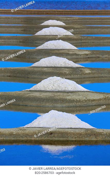 Sea salt, Saltworks, Saline, Guerande, Loire-Atlantique, France