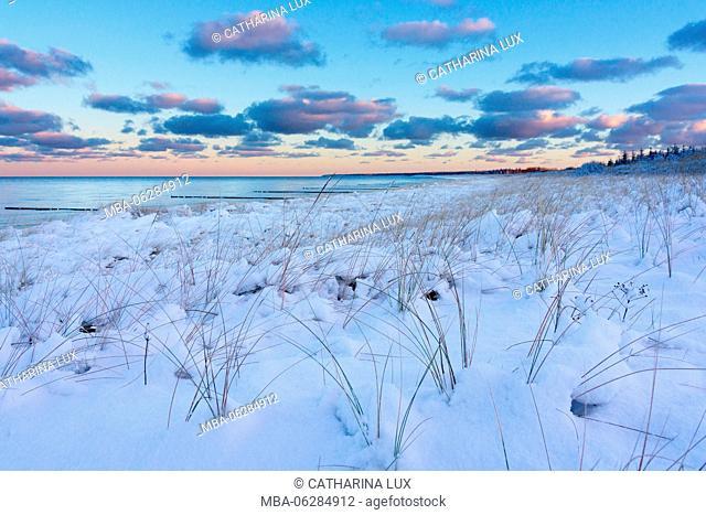 Baltic Sea, Darss, winter, snowscape