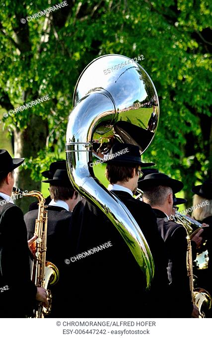 People in costume play saxophone and sousaphone