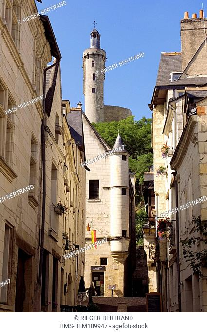 France, Indre et Loire, Loire Valley listed as World Heritage by UNESCO, Chinon, Hotel des Etats Generaux the States General Mansion House at Grand Carroi in...