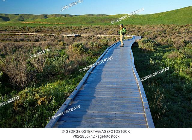 Soda Lake Boardwalk, Carrizo Plain National Monument, California
