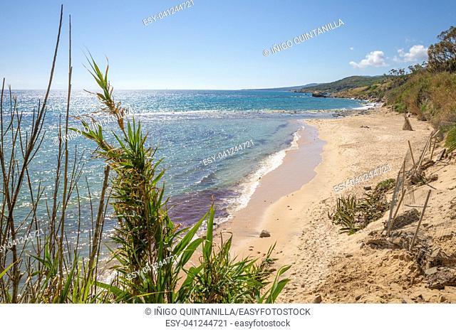 landscape of beautiful and idyllic wild natural Beach Punta Paloma in Tarifa, Cadiz, Andalusia, Spain