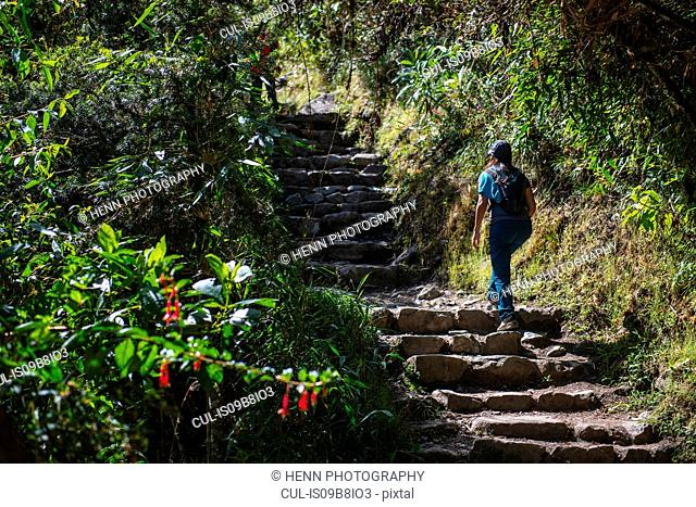 Woman moving up stairway on the Inca Trail close to Machu Picchu, Cusco, Peru