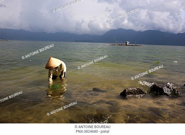 Small-seashell fishing in Danau Lake Maninjau, Sumatra, Indonesia