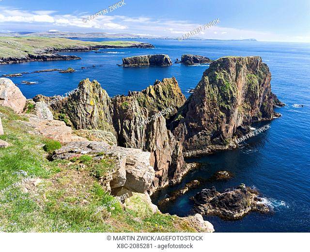 Landscape on West Shetland. the cliffs between Silwick and Westerwick, in the background south shetland with Fitful Head