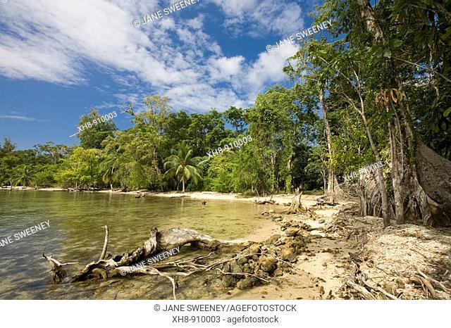 Carenero Island, Bocas del Toro Province, Panama