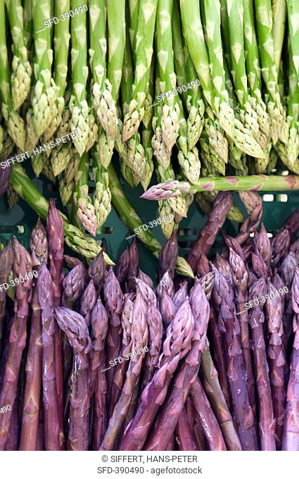 Green and purple asparagus
