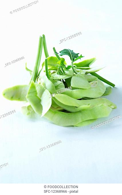 Kohlrabi on a white background