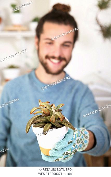 Young man holding succulent plant
