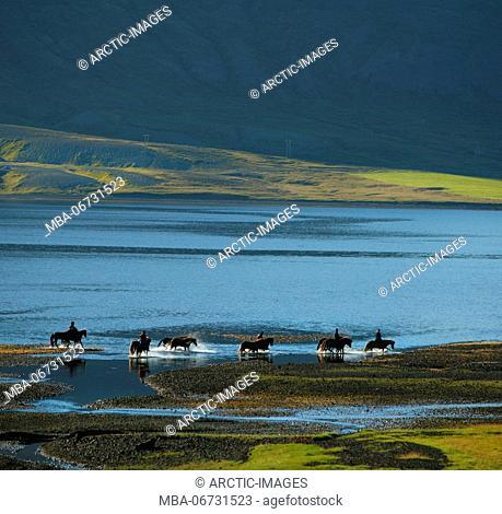 Horse and riders by Kolgrafarfjordur fjord, Western Iceland