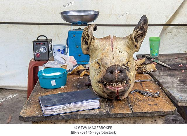 Food stall, pig's head on table, Otavalo market, Otavalo, Imbabura Province, Ecuador