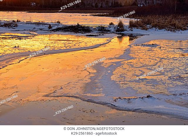 Evening sky reflections in fresh ice on a beaverpond channel, Greater Sudbury, Ontario, Canada