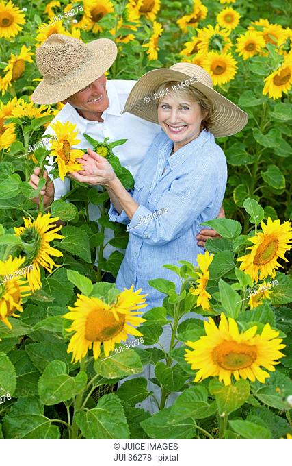 Portrait of smiling couple among sunflowers in sunny meadow