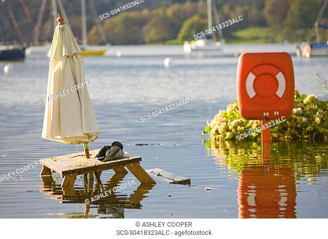 Flooding in the beer garden of The Wateredge Inn at Waterhead on Lake Windermere in Ambleside UK Global warming is leading to a greater incidence of flooding