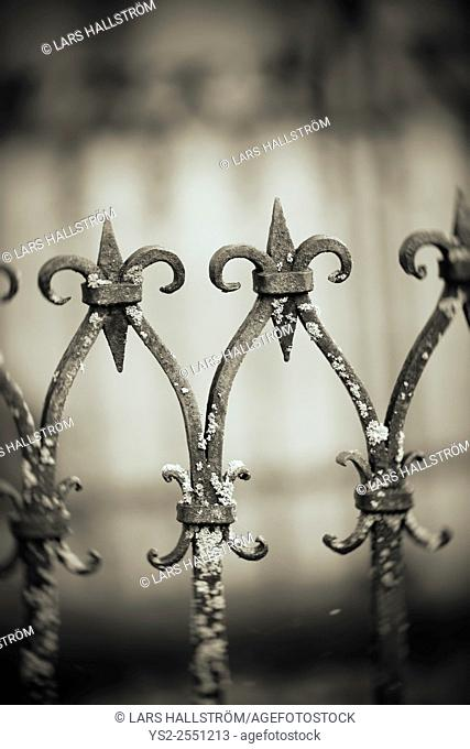 Close up of metal fence at cemetery, Sweden