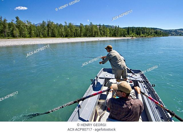 Middle-aged man fly-fishing on Kootenay river with guide rowing fishing boat, East Kootenays, BC, Canada