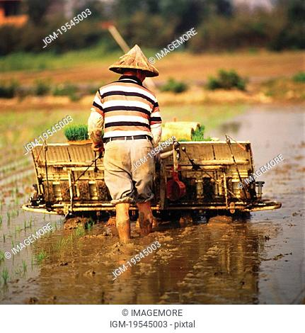 Farmer, Cultivating