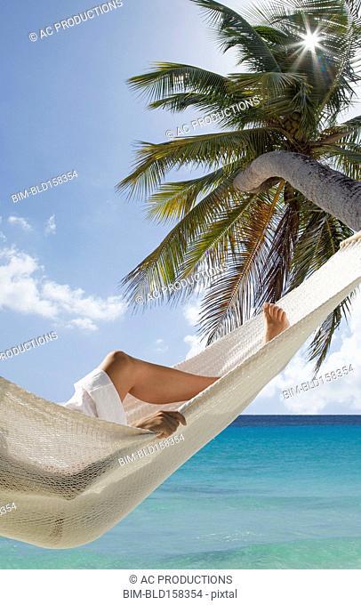 Caucasian woman laying in hammock under palm tree near ocean