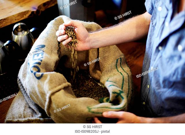 Man with handful of coffee beans from sack at cafe