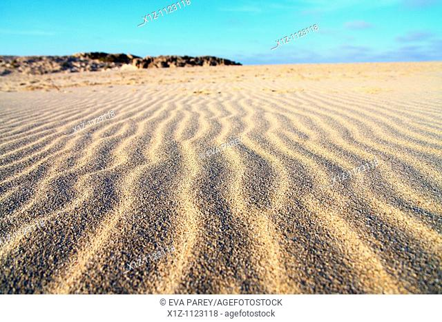 Dunes in Illetas, a long sandy extension in the island of Formentera Baleares, Spain
