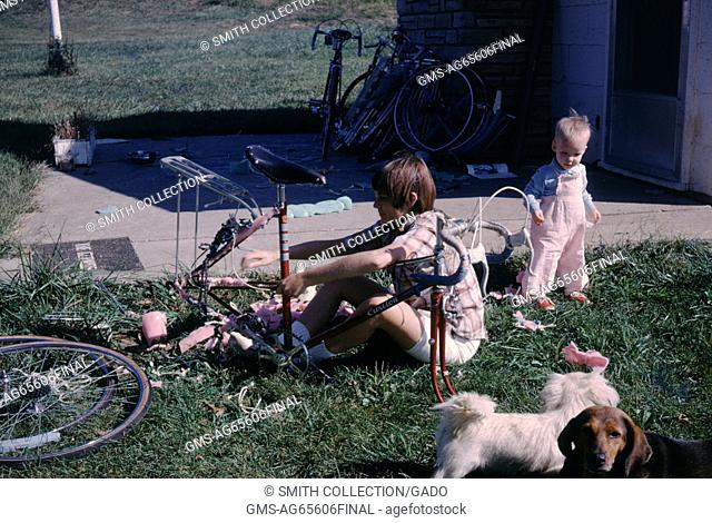 Vernacular snapshot photograph of dogs and children, 1966
