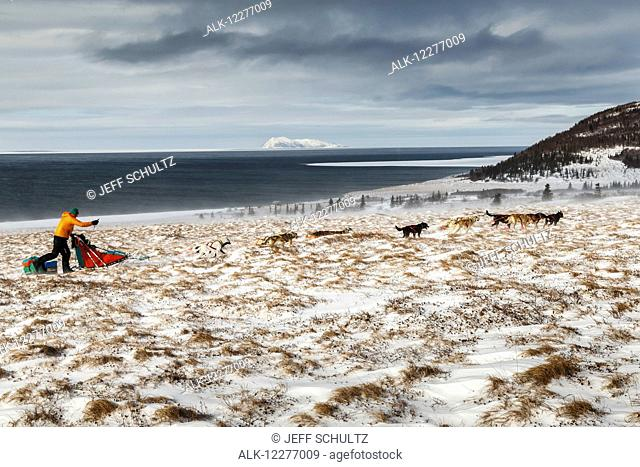 Kelly Maixner runs on the trail through tussocks in 30 mph wind several miles after leaving the Unalakleet checkpoint with the Bering Sea and Besboro Island in...